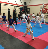 fearless taekwondo classes